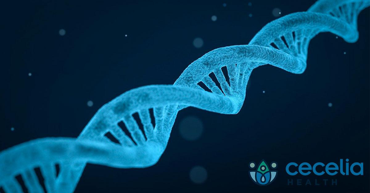 How Do Genetics Affect Risk of Type 2 Diabetes?