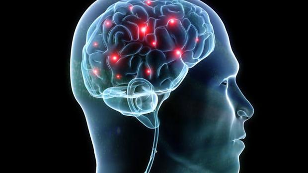 The Neuroscience of Behavior Change